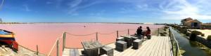 Gruissan pink salt lake.