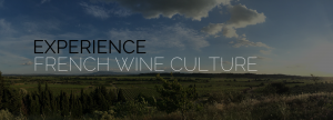 Experience French Wine Culture With Taste Du Languedoc Wine Tours France